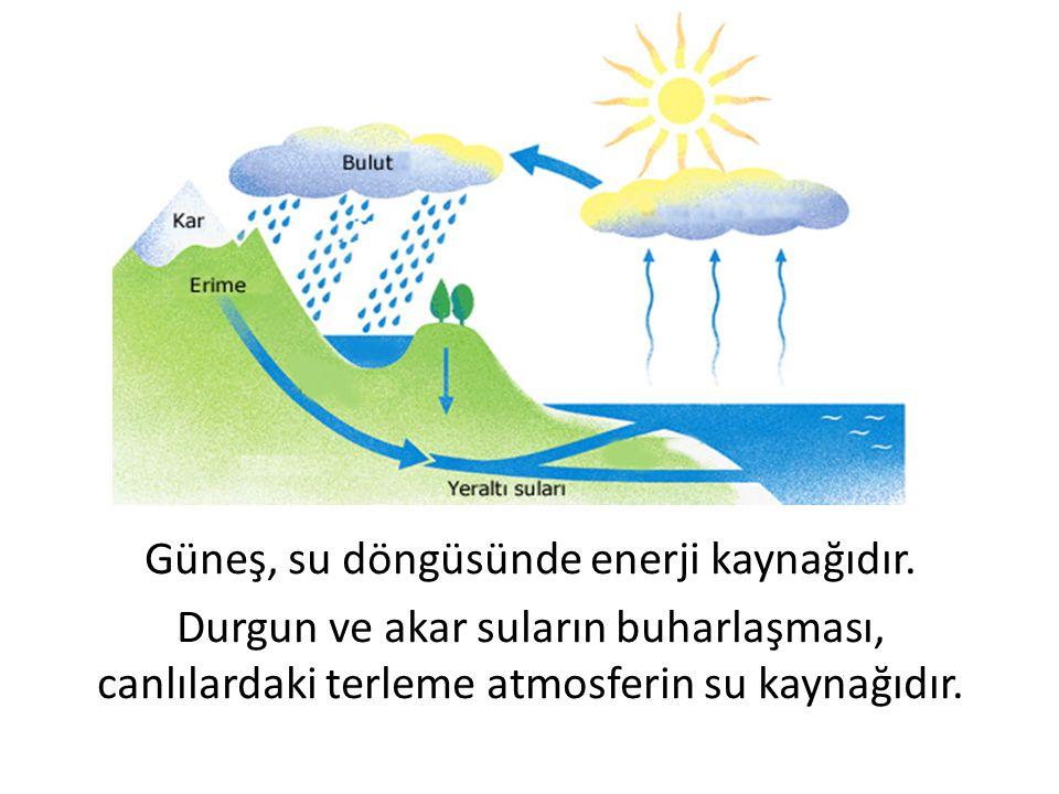 Güneş, su döngüsünde enerji kaynağıdır. Durgun ve akar suların buharlaşması, canlılardaki terleme atmosferin su kaynağıdır.