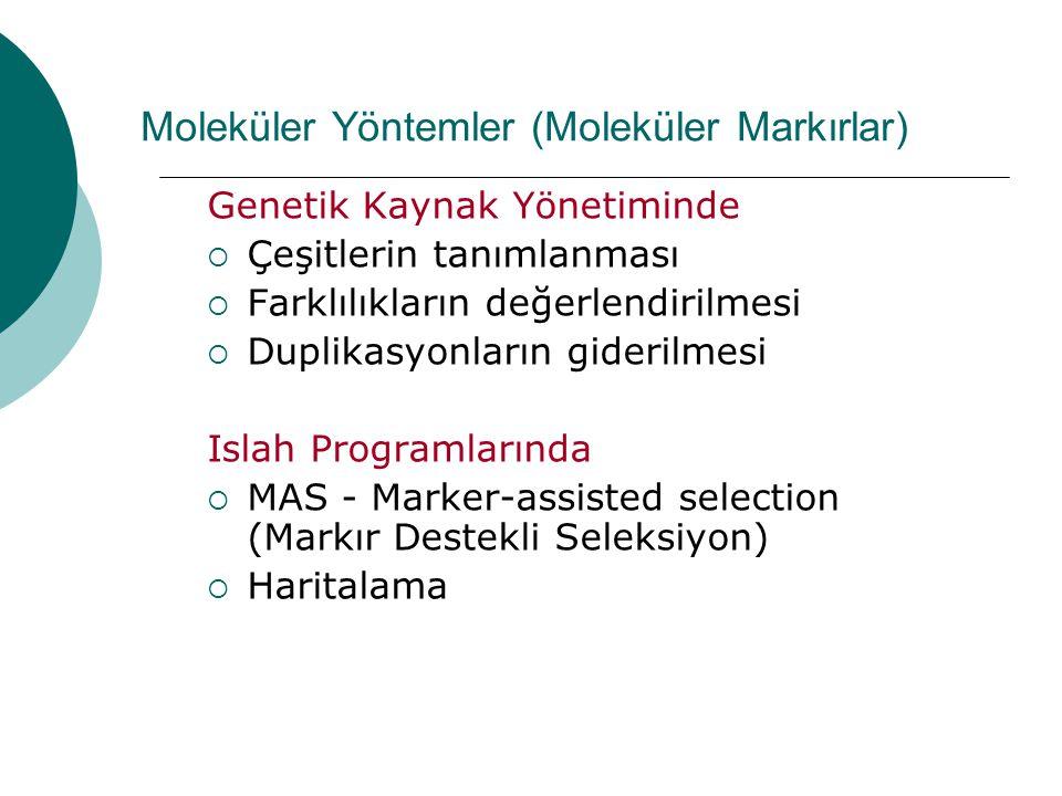 Moleküler Yöntemler (Moleküler Markırlar) Genetik Kaynak Yönetiminde  Çeşitlerin tanımlanması  Farklılıkların değerlendirilmesi  Duplikasyonların g