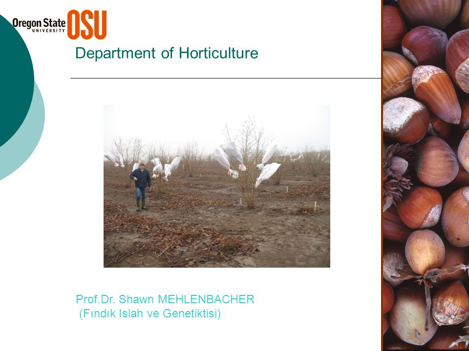 Department of Horticulture Prof.Dr. Shawn MEHLENBACHER (Fındık Islah ve Genetiktisi)