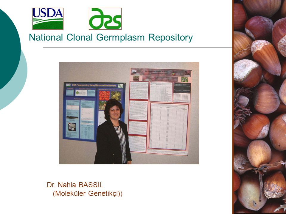National Clonal Germplasm Repository Dr. Nahla BASSIL (Moleküler Genetikçi))
