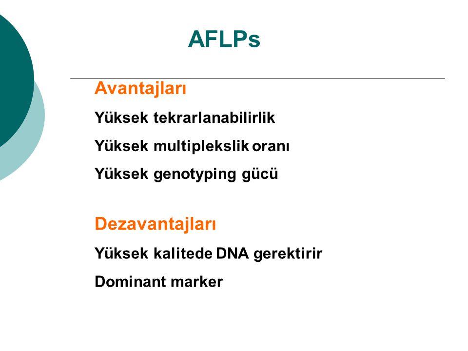 AFLPs Avantajları Yüksek tekrarlanabilirlik Yüksek multiplekslik oranı Yüksek genotyping gücü Dezavantajları Yüksek kalitede DNA gerektirir Dominant m