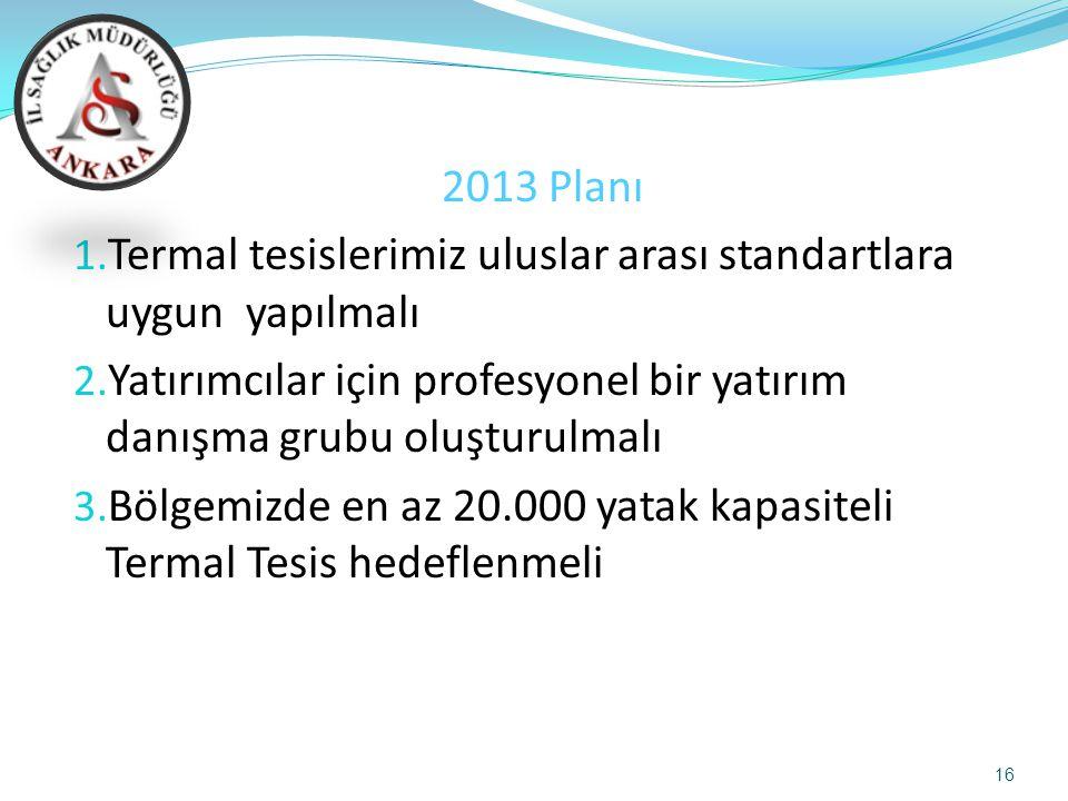 2013 Planı 1. Termal tesislerimiz uluslar arası standartlara uygun yapılmalı 2. Yatırımcılar için profesyonel bir yatırım danışma grubu oluşturulmalı