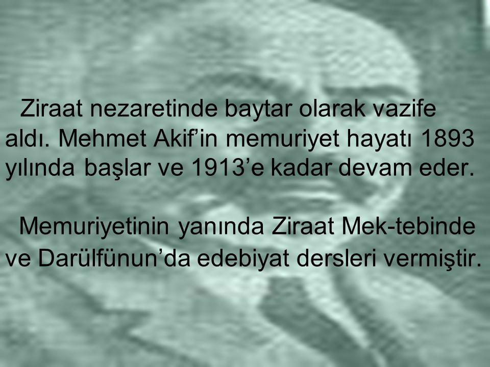 Ziraat nezaretinde baytar olarak vazife aldı. Mehmet Akif'in memuriyet hayatı 1893 yılında başlar ve 1913'e kadar devam eder. Memuriyetinin yanında Zi