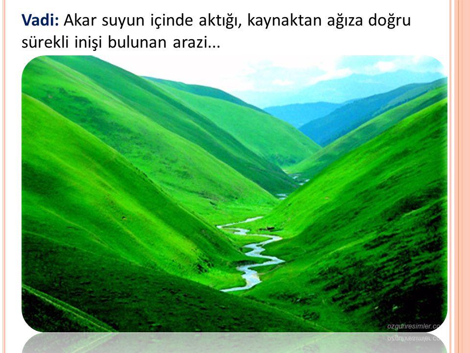 Vadi: Akar suyun içinde aktığı, kaynaktan ağıza doğru sürekli inişi bulunan arazi...