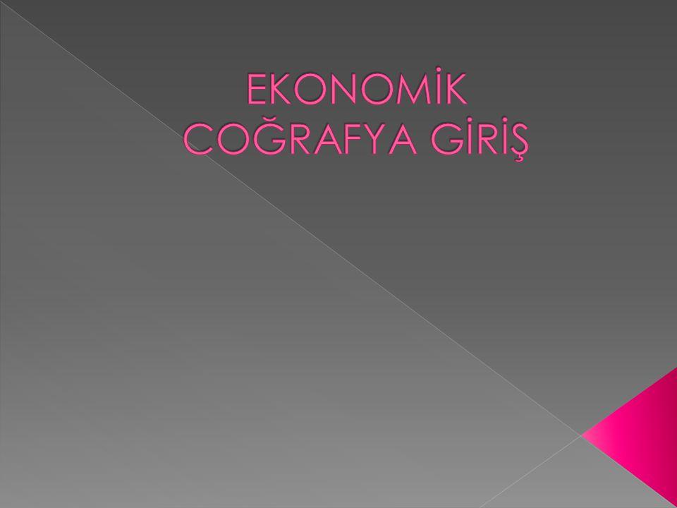  Üretim  Tüketim  Alanları arası ilişkileri  Sosyal ve ekonomik yapıyı