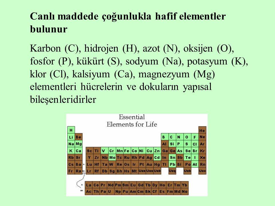 Canlı maddede çoğunlukla hafif elementler bulunur Karbon (C), hidrojen (H), azot (N), oksijen (O), fosfor (P), kükürt (S), sodyum (Na), potasyum (K), klor (Cl), kalsiyum (Ca), magnezyum (Mg) elementleri hücrelerin ve dokuların yapısal bileşenleridirler