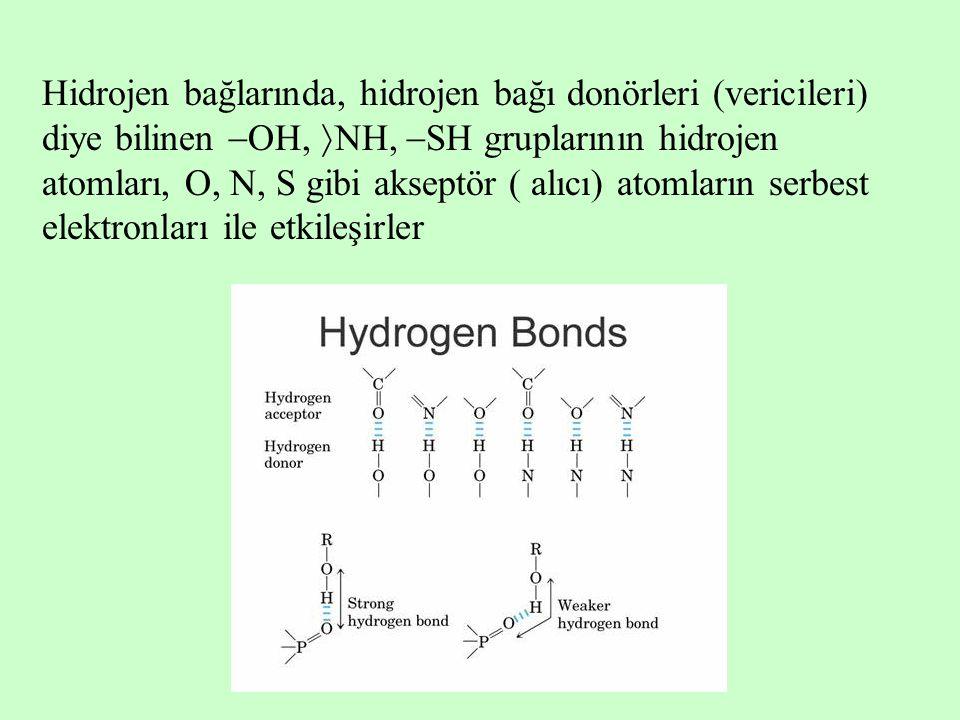 Hidrojen bağlarında, hidrojen bağı donörleri (vericileri) diye bilinen  OH,  NH,  SH gruplarının hidrojen atomları, O, N, S gibi akseptör ( alıcı) atomların serbest elektronları ile etkileşirler