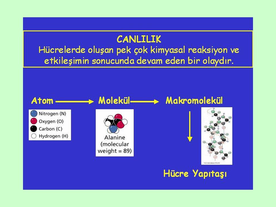 Patlayıcı (Explosive, E) Maddeler İyot benzen, etilnitrat, etilnitrit, pikrikasit, trinitrobenzen, trinitrotoluen, trinitrogliserin (nitrogliserin)…