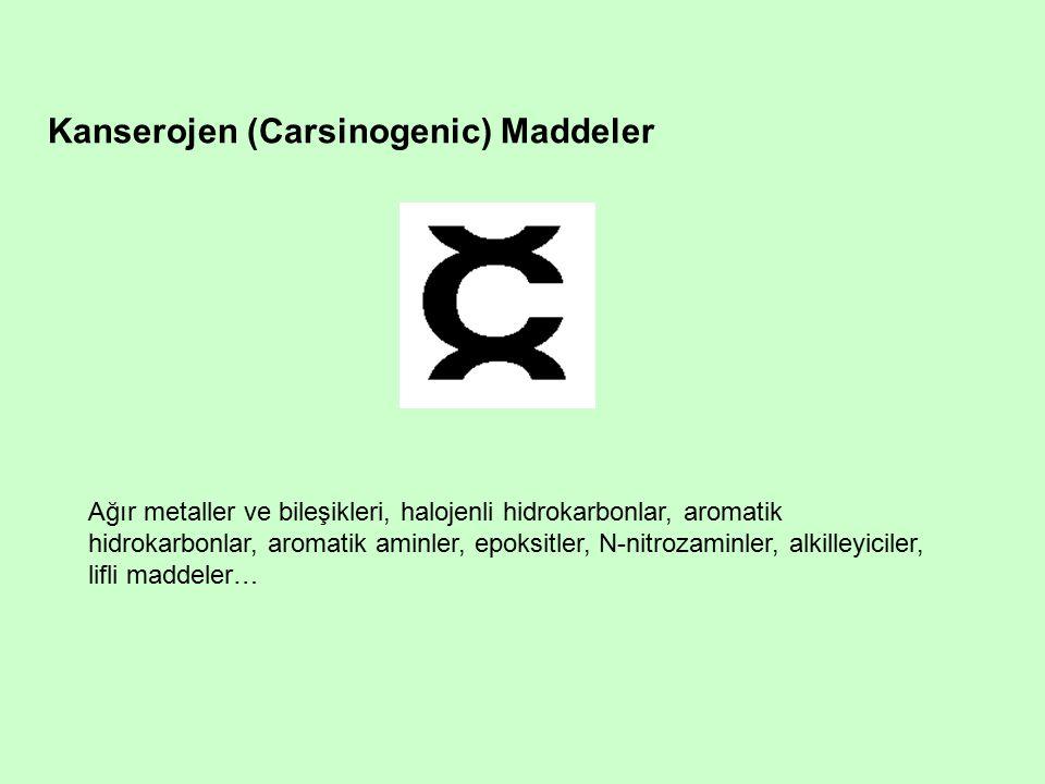 Kanserojen (Carsinogenic) Maddeler Ağır metaller ve bileşikleri, halojenli hidrokarbonlar, aromatik hidrokarbonlar, aromatik aminler, epoksitler, N-nitrozaminler, alkilleyiciler, lifli maddeler…