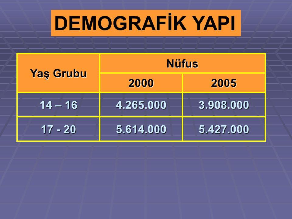 DEMOGRAFİK YAPI Yaş Grubu Nüfus 20002005 14 – 16 4.265.0003.908.000 17 - 20 5.614.0005.427.000