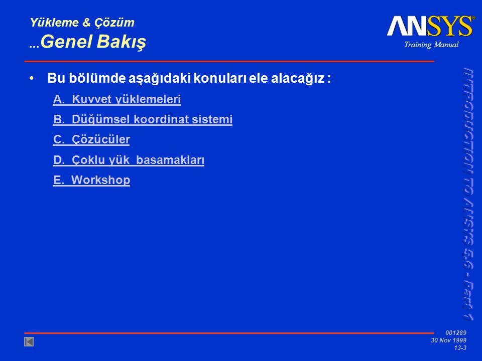 Training Manual 001289 30 Nov 1999 13-3 Yükleme & Çözüm... Genel Bakış Bu bölümde aşağıdaki konuları ele alacağız : A. Kuvvet yüklemeleri B. Düğümsel