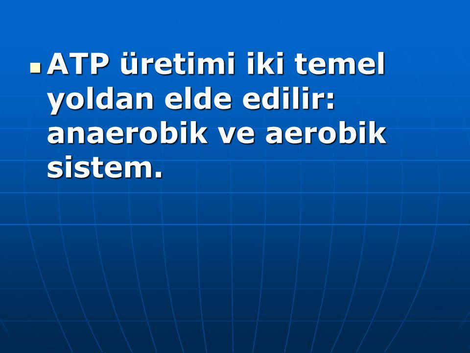 ATP üretimi iki temel yoldan elde edilir: anaerobik ve aerobik sistem. ATP üretimi iki temel yoldan elde edilir: anaerobik ve aerobik sistem.