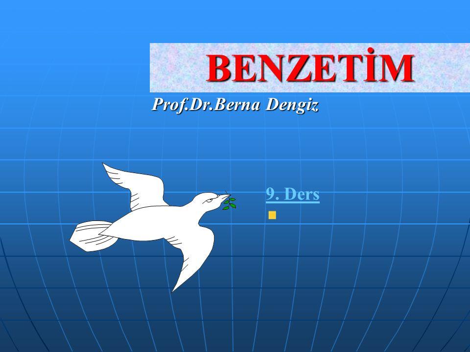 BENZETİM Prof.Dr.Berna Dengiz 9. Ders