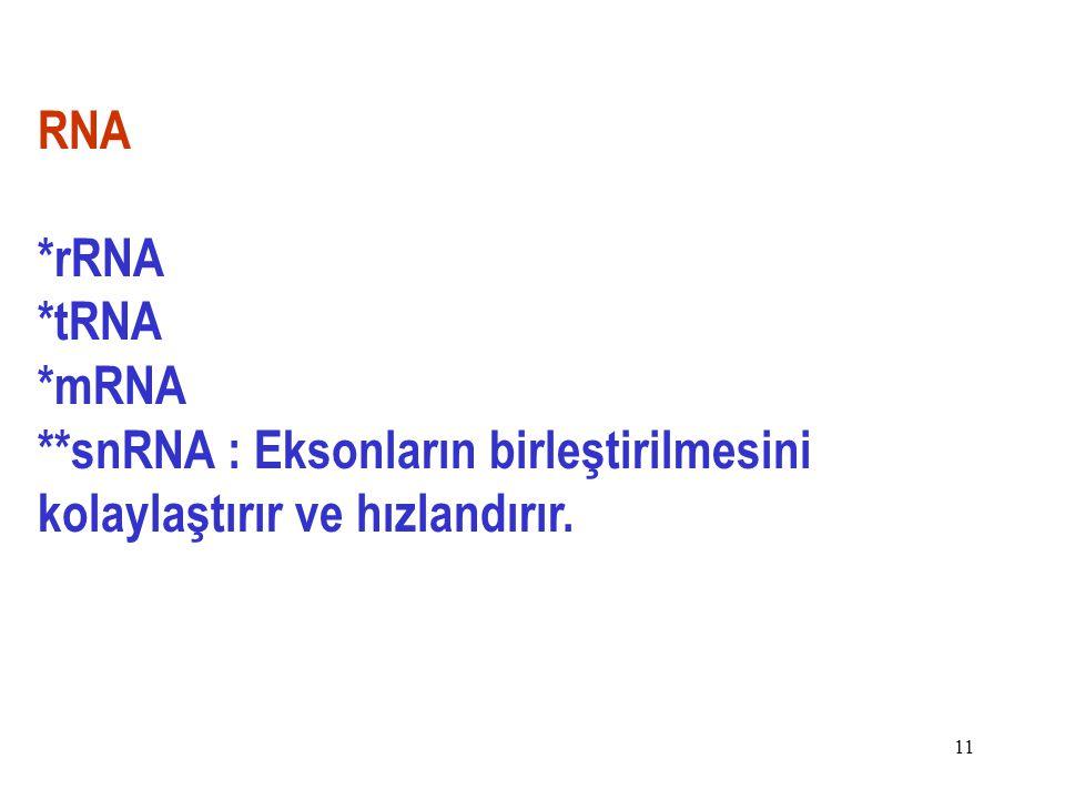 11 RNA *rRNA *tRNA *mRNA **snRNA : Eksonların birleştirilmesini kolaylaştırır ve hızlandırır.