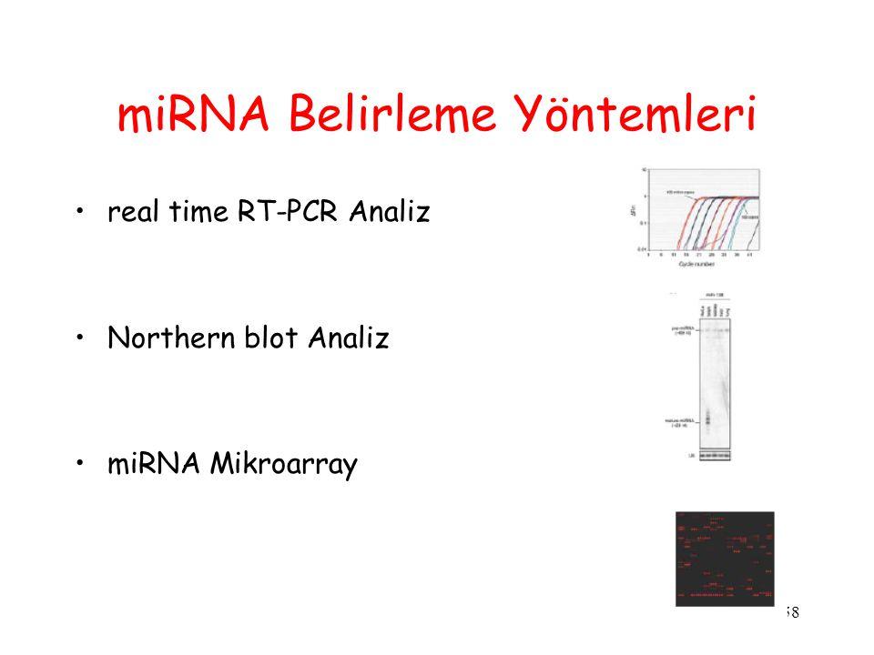 58 miRNA Belirleme Yöntemleri real time RT-PCR Analiz Northern blot Analiz miRNA Mikroarray