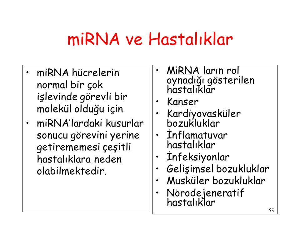 59 miRNA ve Hastalıklar miRNA hücrelerin normal bir çok işlevinde görevli bir molekül olduğu için miRNA'lardaki kusurlar sonucu görevini yerine getirememesi çeşitli hastalıklara neden olabilmektedir.