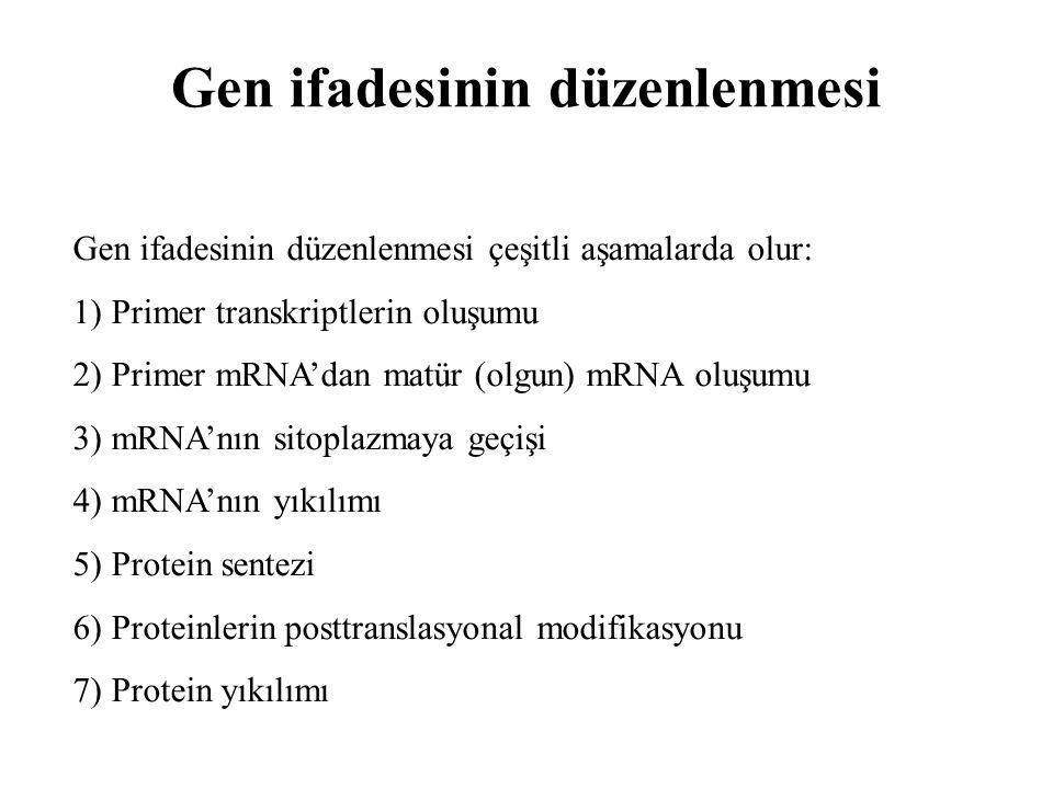 17 Nükleotid dizelerinde bazı sinyaller bulunur ve bu sinyaller RNA polimerazın nerede ve ne sıklıkla transkripsiyona başlayacağını ve transkripsiyonun nerede sonlanacağını gösterir.
