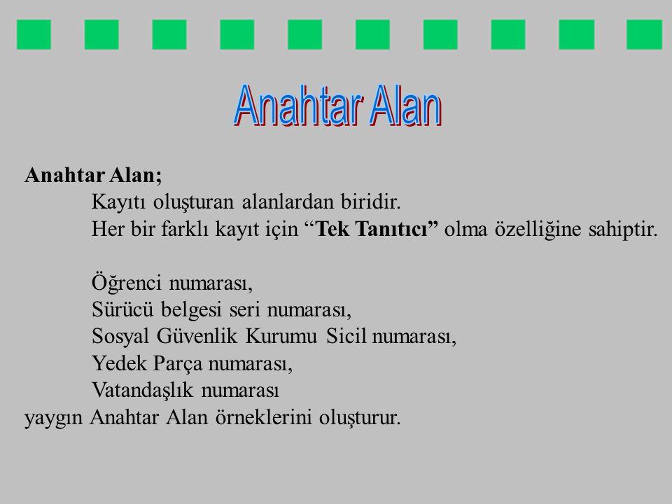 Anahtar Alan (Öğrenci No) Erol Yılmaz Eskişehir 1.1.80 Alan (Ad) Alan (Soyad) Alan (Doğum Yeri) Alan (Doğum Tarihi) Kayıt