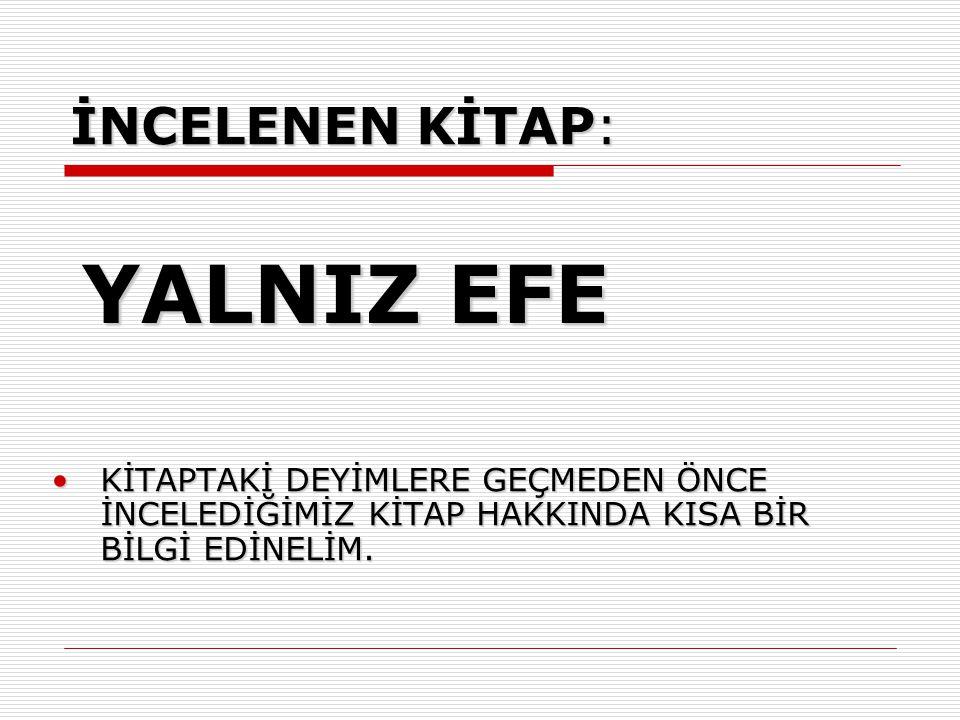 YALNIZ EFE Yalnız Efe, alacağını istediği için öldürülen babasının katillerini yakalamak isteyen; haksızlığa, kötülüklere savaş açan genç bir kızın öyküsüdür.