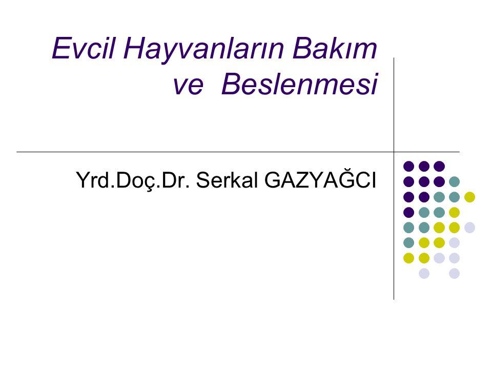 Evcil Hayvanların Bakım ve Beslenmesi Yrd.Doç.Dr. Serkal GAZYAĞCI