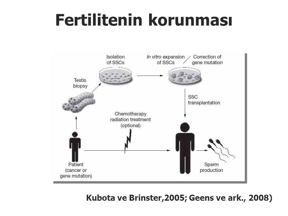 Fertilitenin korunması Kubota ve Brinster,2005; Geens ve ark., 2008)