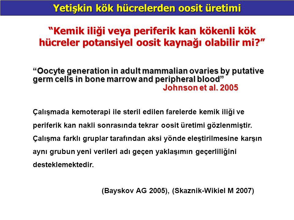 """""""Kemik iliği veya periferik kan kökenli kök hücreler potansiyel oosit kaynağı olabilir mi?"""" Yetişkin kök hücrelerden oosit üretimi """"Oocyte generation"""