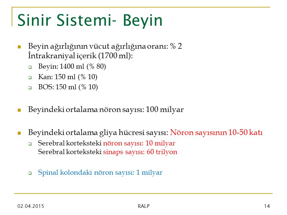Sinir Sistemi- Beyin 02.04.201514 RALP Beyin ağırlığının vücut ağırlığına oranı: % 2 İntrakraniyal içerik (1700 ml):  Beyin: 1400 ml (% 80)  Kan: 150 ml (% 10)  BOS: 150 ml (% 10) Beyindeki ortalama nöron sayısı: 100 milyar Beyindeki ortalama gliya hücresi sayısı: Nöron sayısının 10-50 katı  Serebral korteksteki nöron sayısı: 10 milyar Serebral korteksteki sinaps sayısı: 60 trilyon  Spinal kolondaki nöron sayısı: 1 milyar