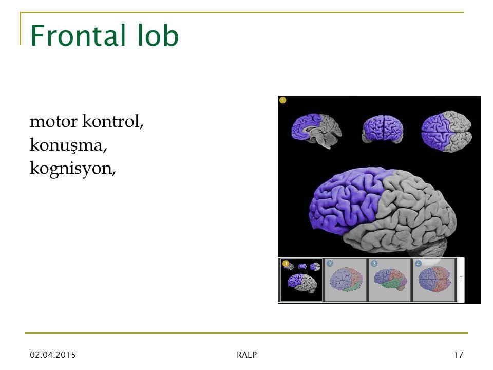 Frontal lob motor kontrol, konuşma, kognisyon, 02.04.201517 RALP