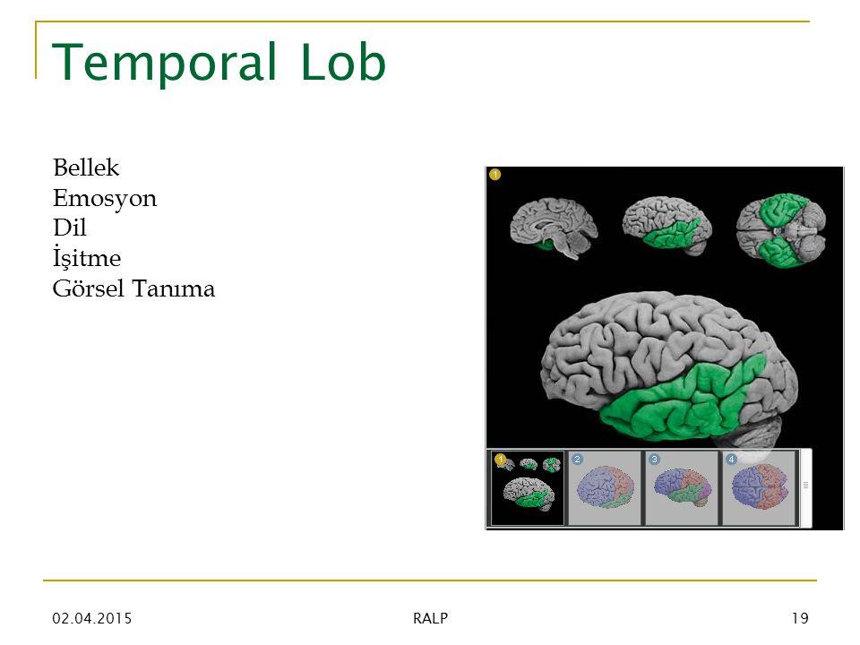 Temporal Lob Bellek Emosyon Dil İşitme Görsel Tanıma 02.04.201519 RALP