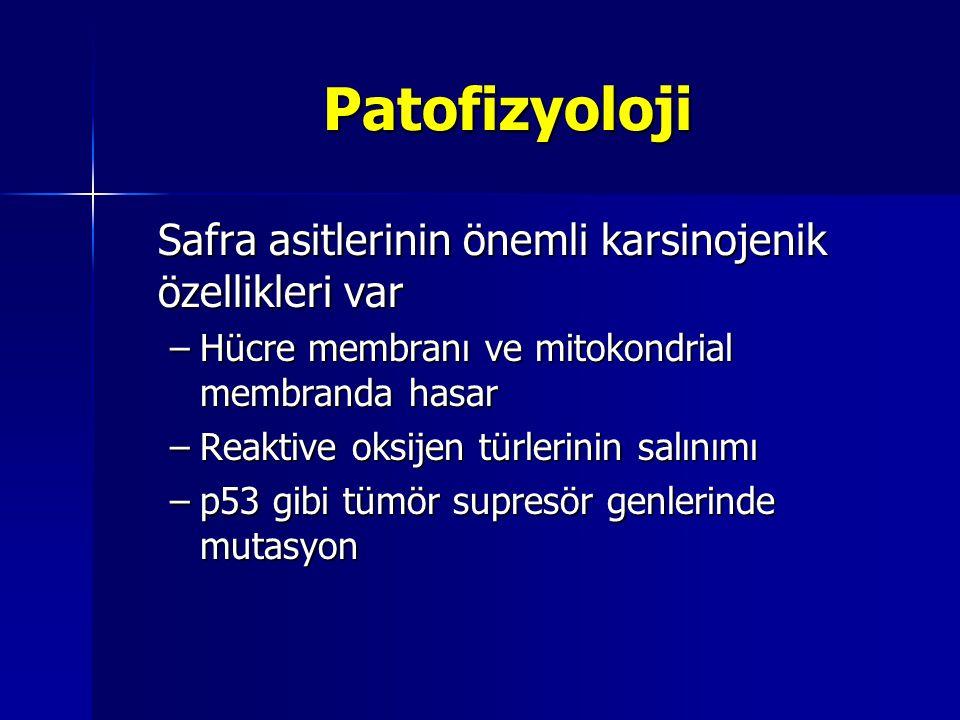 Patofizyoloji Safra asitlerinin önemli karsinojenik özellikleri var –Hücre membranı ve mitokondrial membranda hasar –Reaktive oksijen türlerinin salın