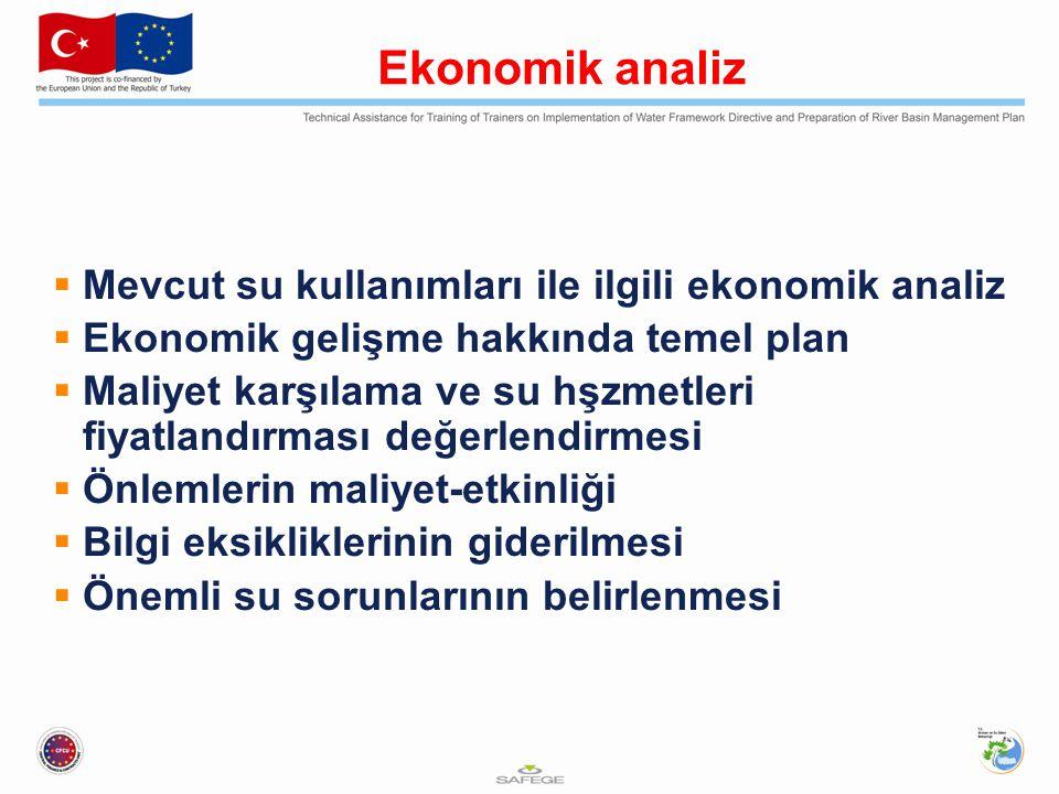 Ekonomik analiz  Mevcut su kullanımları ile ilgili ekonomik analiz  Ekonomik gelişme hakkında temel plan  Maliyet karşılama ve su hşzmetleri fiyatl