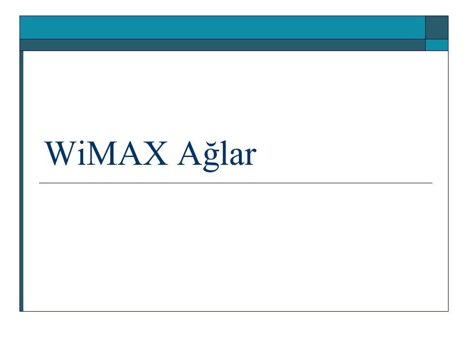 WiMAX Ağlar