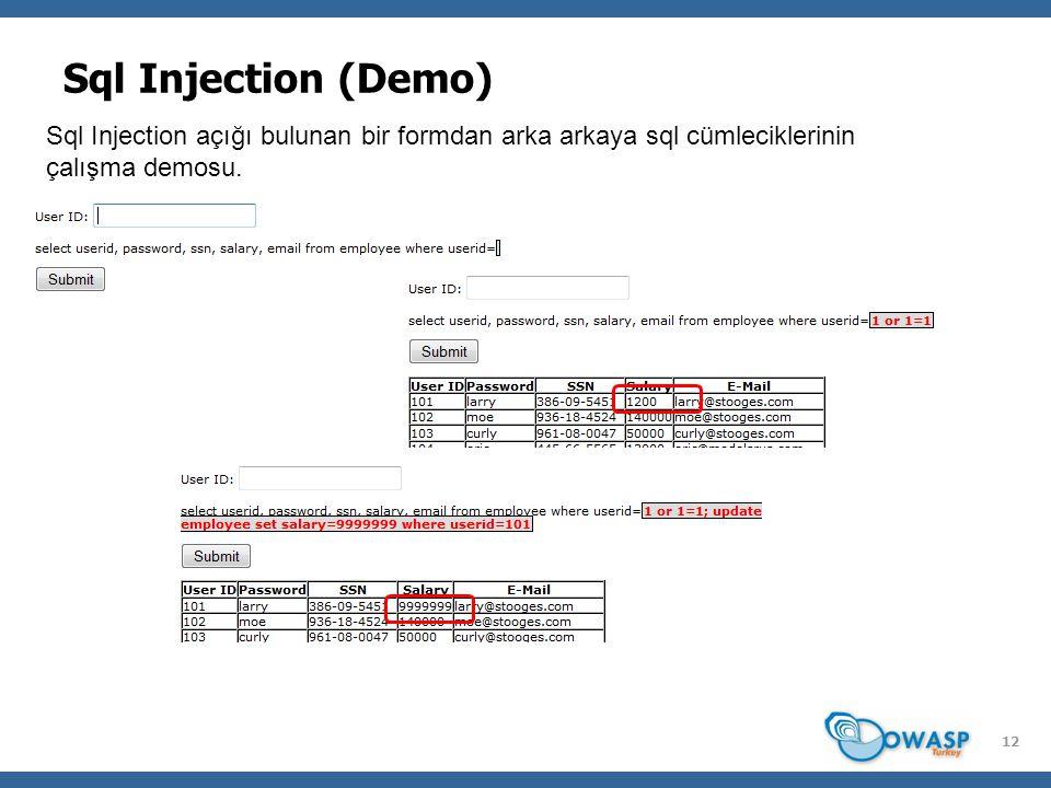 12 Sql Injection (Demo) Sql Injection açığı bulunan bir formdan arka arkaya sql cümleciklerinin çalışma demosu.