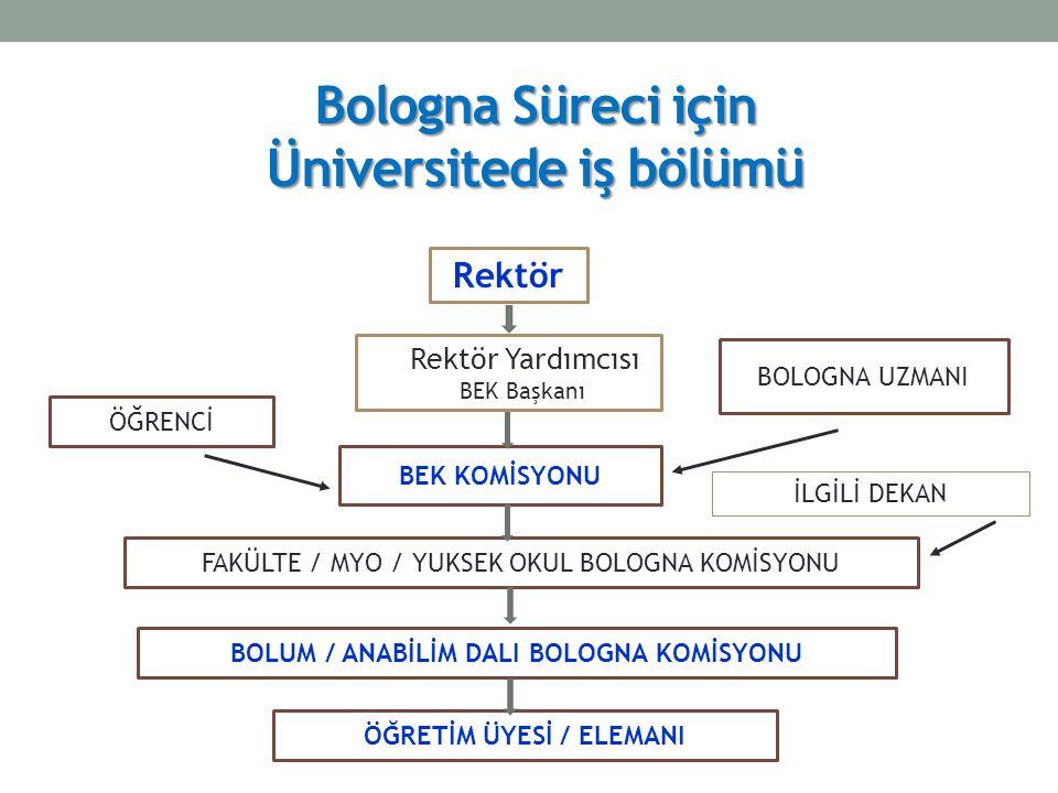 Bologna Süreci için Üniversitede iş bölümü Rektör Rektör Yardımcısı BEK Başkanı BOLOGNA UZMANI BEK KOMİSYONU FAKÜLTE / MYO / YUKSEK OKUL BOLOGNA KOMİSYONU BOLUM / ANABİLİM DALI BOLOGNA KOMİSYONU ÖĞRETİM ÜYESİ / ELEMANI ÖĞRENCİ İLGİLİ DEKAN