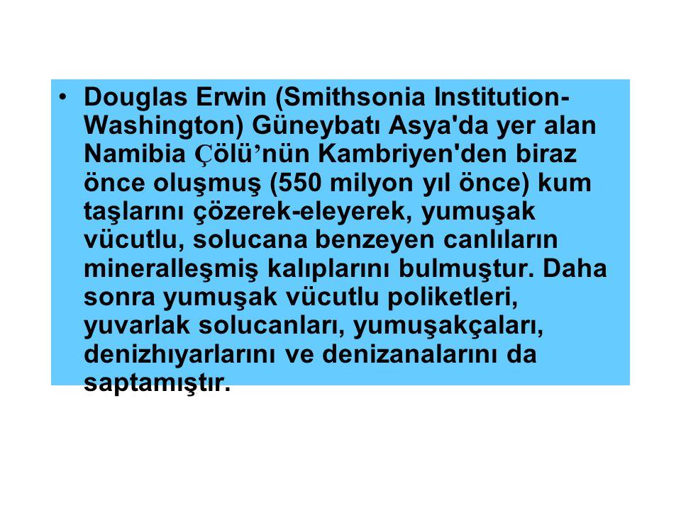Douglas Erwin (Smithsonia Institution- Washington) Güneybatı Asya'da yer alan Namibia Ç ölü ' nün Kambriyen'den biraz önce oluşmuş (550 milyon yıl önc