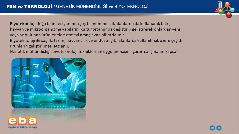 FEN ve TEKNOLOJİ / GENETİK MÜHENDİSLİĞİ ve BİYOTEKNOLOJİ 11 Biyoteknoloji doğa bilimleri yanında çeşitli mühendislik alanlarını da kullanarak bitki, h