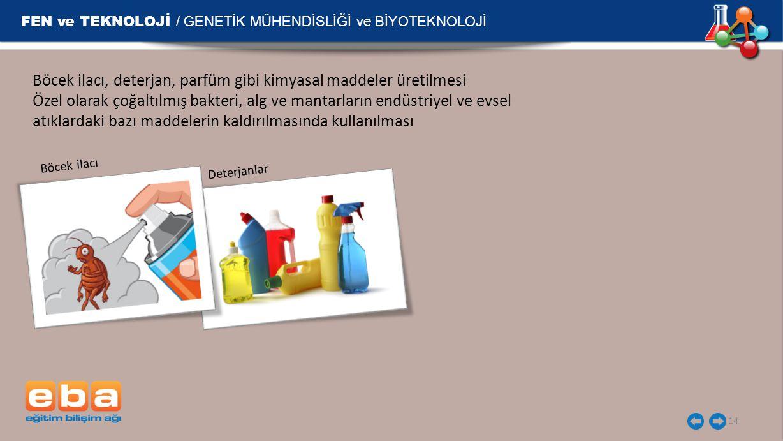 FEN ve TEKNOLOJİ / GENETİK MÜHENDİSLİĞİ ve BİYOTEKNOLOJİ 14 Böcek ilacı, deterjan, parfüm gibi kimyasal maddeler üretilmesi Özel olarak çoğaltılmış bakteri, alg ve mantarların endüstriyel ve evsel atıklardaki bazı maddelerin kaldırılmasında kullanılması Böcek ilacı Deterjanlar
