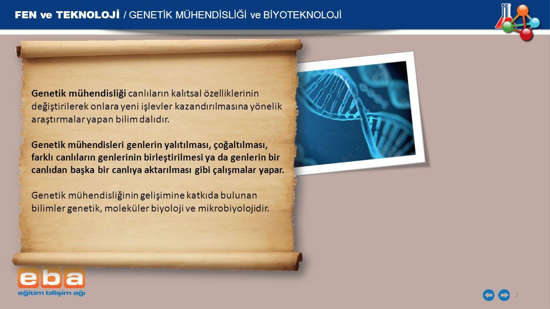 FEN ve TEKNOLOJİ / GENETİK MÜHENDİSLİĞİ ve BİYOTEKNOLOJİ 2 Genetik mühendisliği canlıların kalıtsal özelliklerinin değiştirilerek onlara yeni işlevler kazandırılmasına yönelik araştırmalar yapan bilim dalıdır.