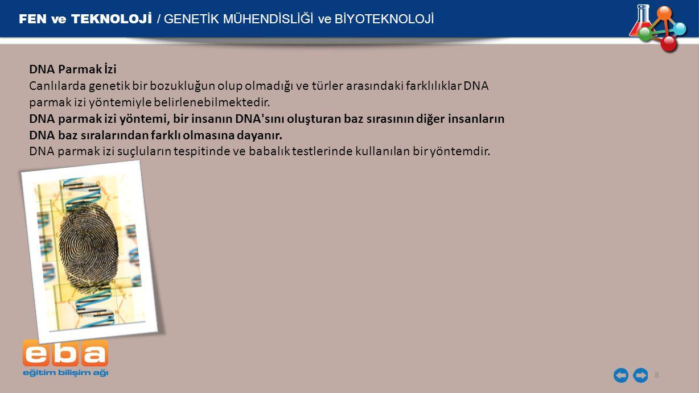 FEN ve TEKNOLOJİ / GENETİK MÜHENDİSLİĞİ ve BİYOTEKNOLOJİ 8 DNA Parmak İzi Canlılarda genetik bir bozukluğun olup olmadığı ve türler arasındaki farklılıklar DNA parmak izi yöntemiyle belirlenebilmektedir.