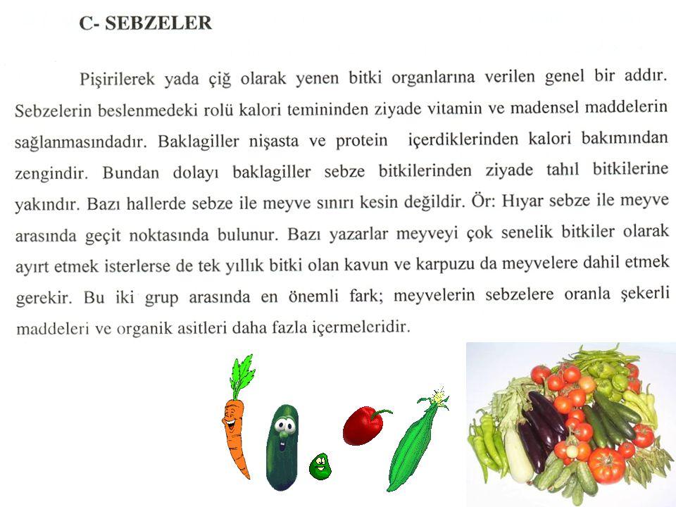 Patlıcan Solanum melongena Solanaceae Vatanı Hindistan'dır.
