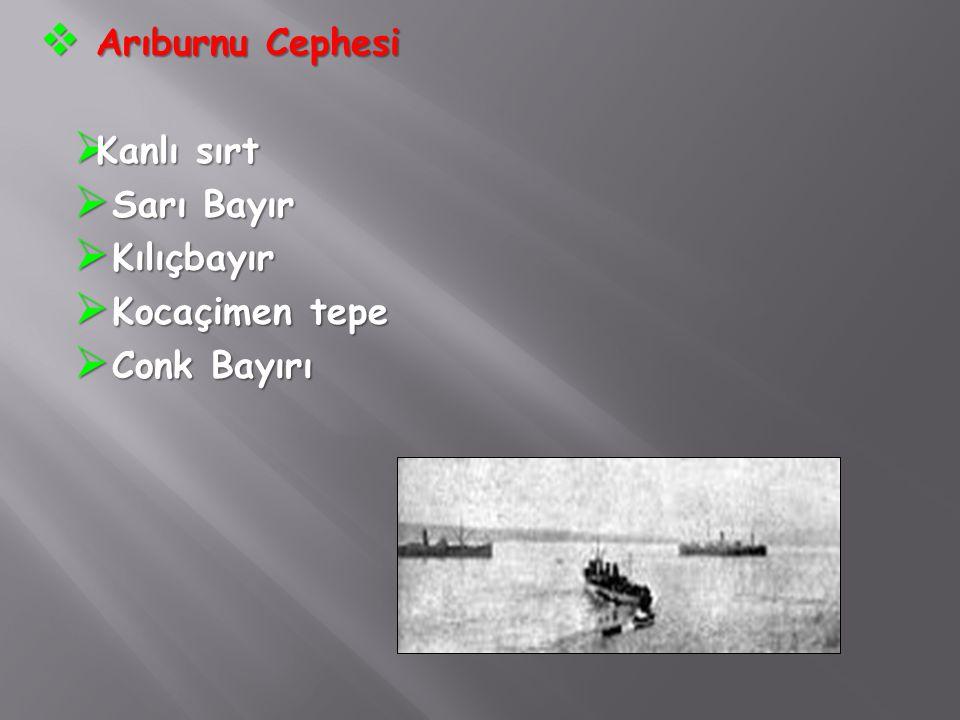  Arıburnu Cephesi  Kanlı sırt  Sarı Bayır  Kılıçbayır  Kocaçimen tepe  Conk Bayırı
