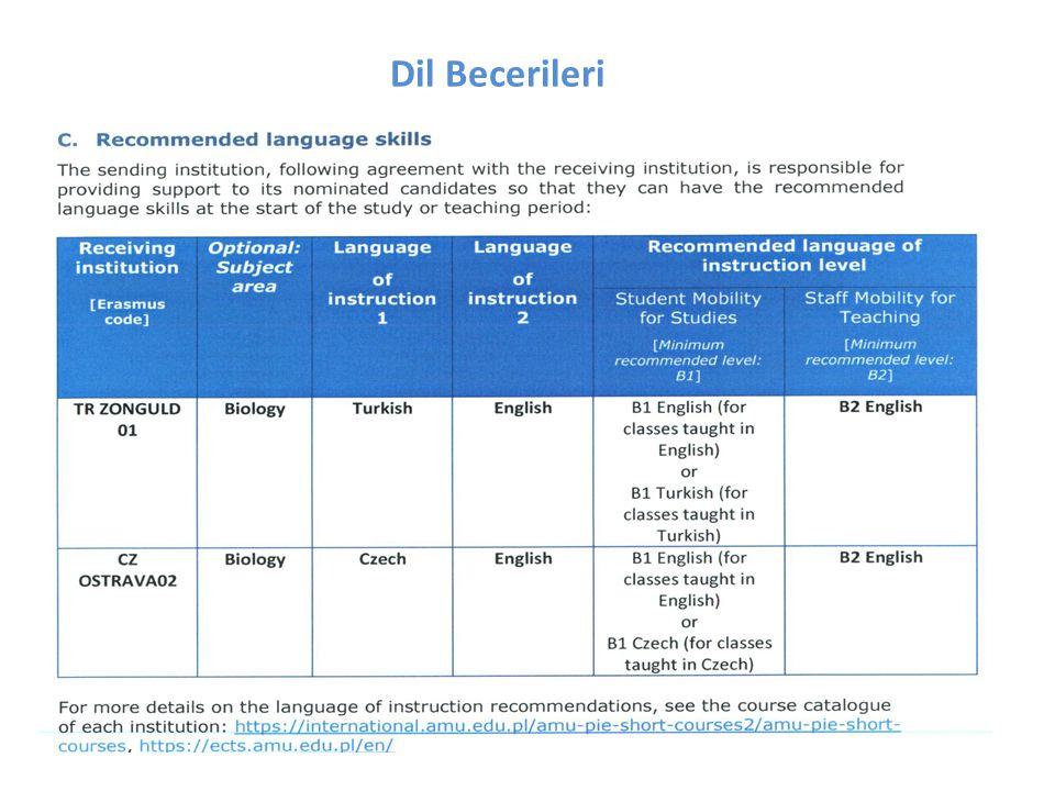 Dil Becerileri