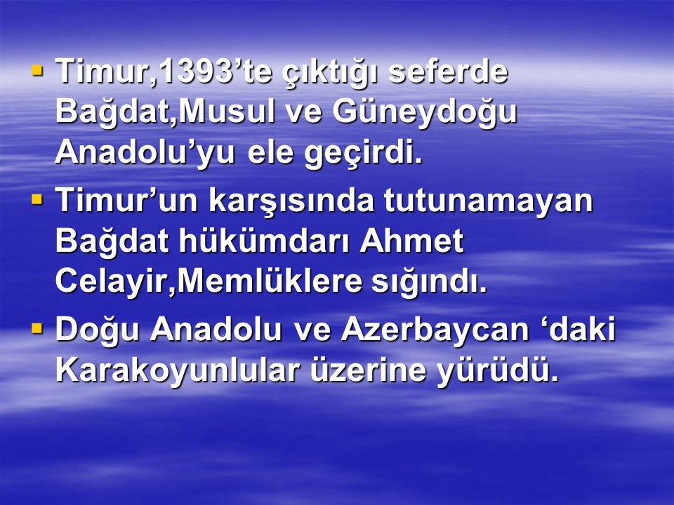  Timur,1393'te çıktığı seferde Bağdat,Musul ve Güneydoğu Anadolu'yu ele geçirdi.  Timur'un karşısında tutunamayan Bağdat hükümdarı Ahmet Celayir,Mem