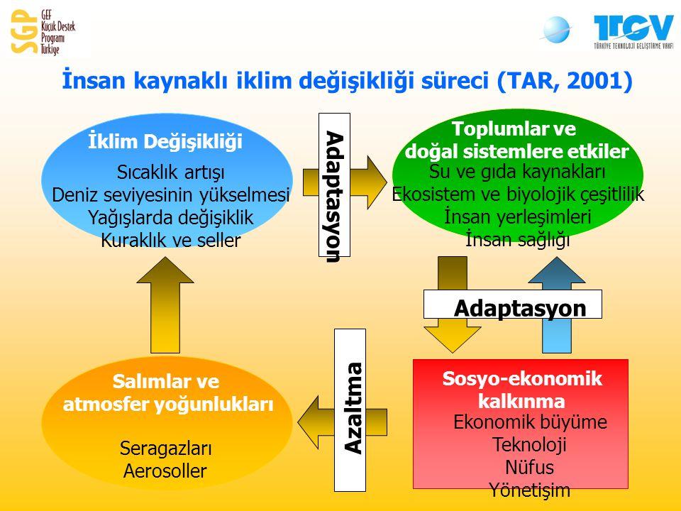 Sosyo-ekonomik kalkınma Ekonomik büyüme Teknoloji Nüfus Yönetişim Salımlar ve atmosfer yoğunlukları Seragazları Aerosoller İklim Değişikliği Sıcaklık artışı Deniz seviyesinin yükselmesi Yağışlarda değişiklik Kuraklık ve seller Toplumlar ve doğal sistemlere etkiler Su ve gıda kaynakları Ekosistem ve biyolojik çeşitlilik İnsan yerleşimleri İnsan sağlığı Adaptasyon Azaltma İnsan kaynaklı iklim değişikliği süreci (TAR, 2001)