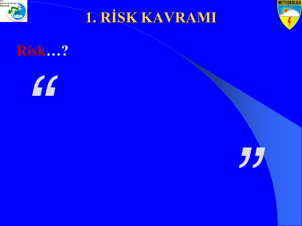 Sözlük anlamı;  Zarara uğrama tehlikesi  Öngörülebilir tehlikeler  Amaca ulaşmayı engelleyebilecek bir olayın ortaya çıkma olasılığı; tehlike  Belirli bir amaca veya getiriye ulaşmak için katlanılabilecek ya da amaca ulaşırken karşılaşılabilecek zarar ya da olumsuzluk olasılığı 1.