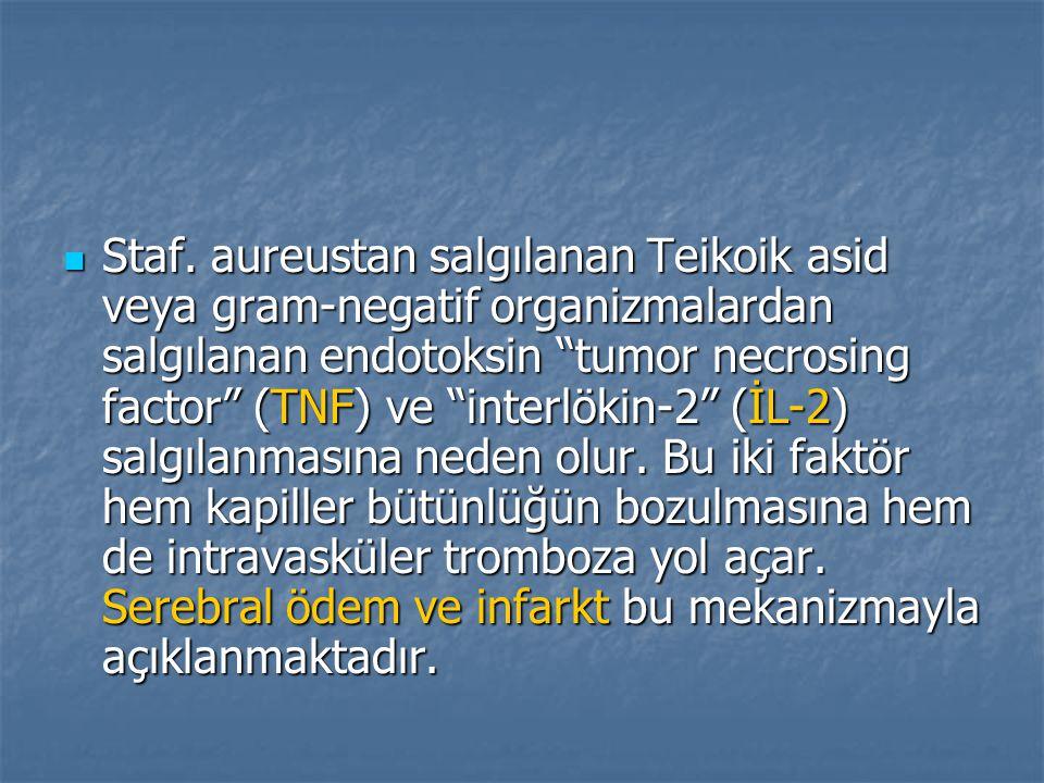 """Staf. aureustan salgılanan Teikoik asid veya gram-negatif organizmalardan salgılanan endotoksin """"tumor necrosing factor"""" (TNF) ve """"interlökin-2"""" (İL-2"""