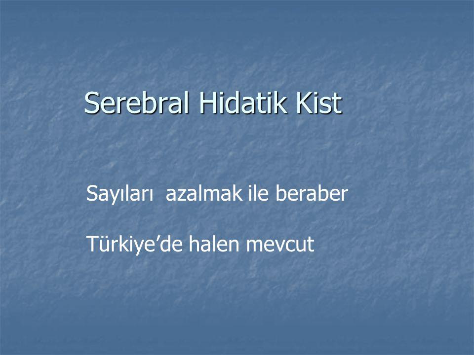 Serebral Hidatik Kist Sayıları azalmak ile beraber Türkiye'de halen mevcut