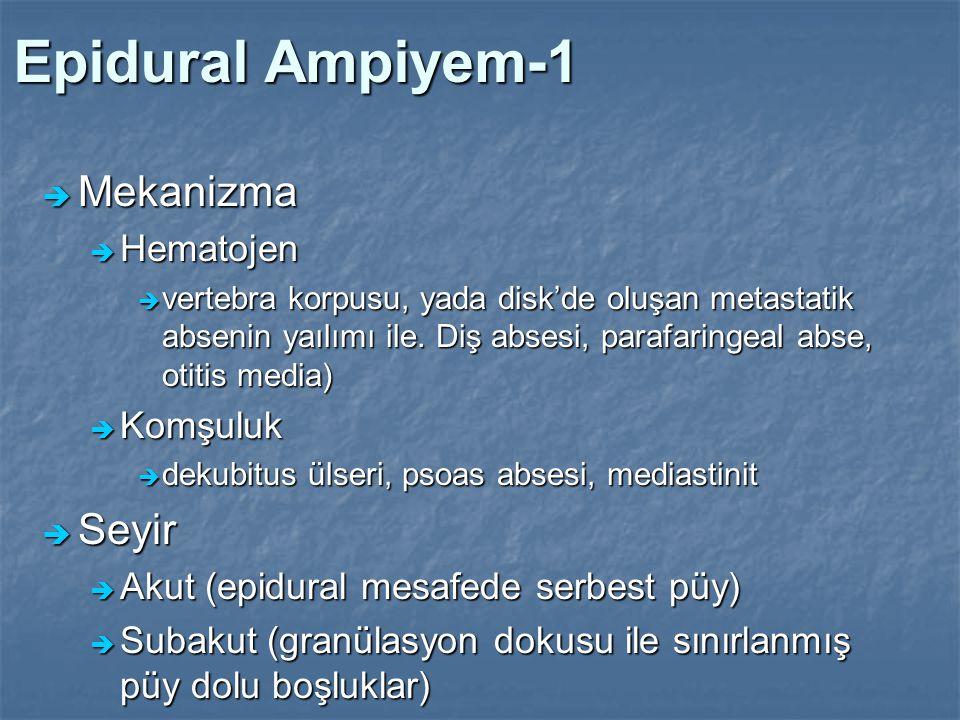 Epidural Ampiyem-1  Mekanizma  Hematojen  vertebra korpusu, yada disk'de oluşan metastatik absenin yaılımı ile. Diş absesi, parafaringeal abse, oti