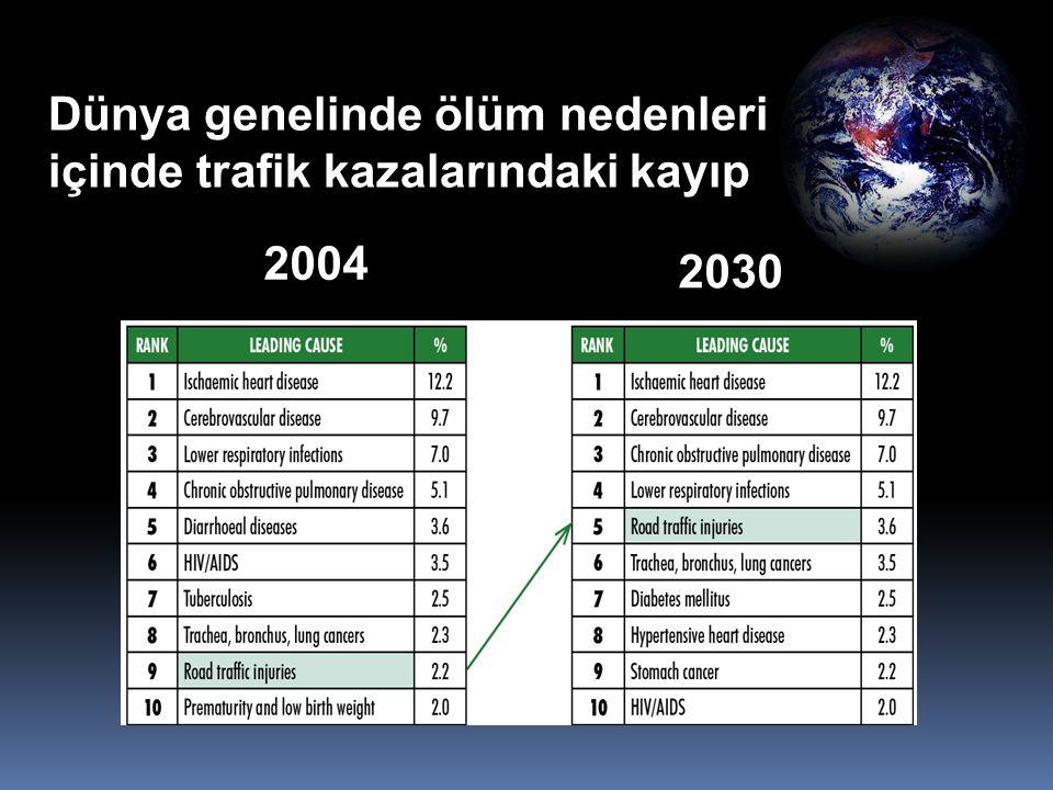 2004 ölüm nedenleri 2030 ölüm nedenleri Dünya genelinde ölüm nedenleri içinde trafik kazalarındaki kayıp 2004 2030