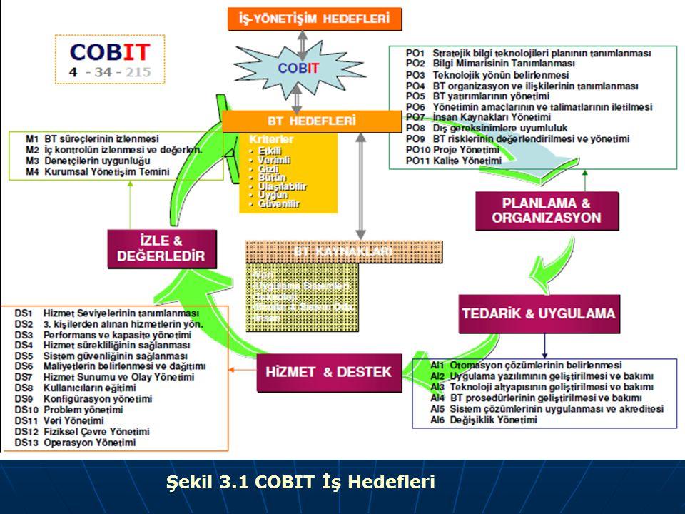 Şekil 3.1 COBIT İş Hedefleri